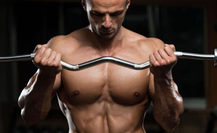La relación entre el tipo de fibras musculares y la hipertrofia