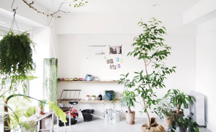 white modern living space