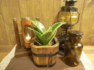 植木鉢を選ぶ 雰囲気を合わせる