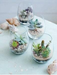 ガラスの中に植物を 〜テラリウム〜