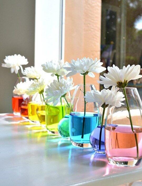 [snap]花を色水につけて飾る