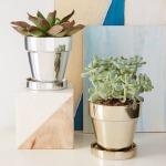 [snap]メタリックの植木鉢