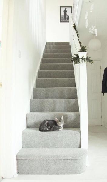 階段をカーペットにする