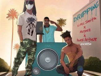 DJ Mic Smith, Mugeez, Kwesi Arthur – Dripping