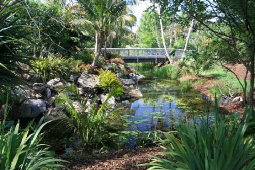 crear unjardin tropical