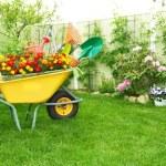 Garden Make Over Ideas To Save Outdoor Space