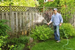 lawn-care-and-water-saving-tips