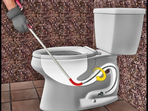 Image Result For How Do You Use A Snake To Unclog A Toilet