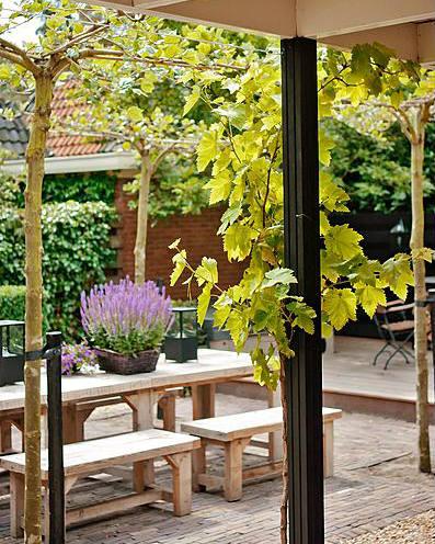Ideeen Kleine Tuin : Ideeën voor het inrichten van een kleine tuin