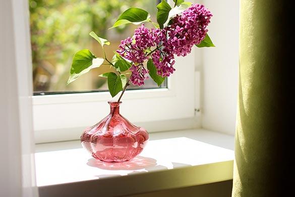 Interior design ideas for window sills