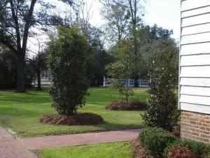 Liberty-Hall-Plantation-22