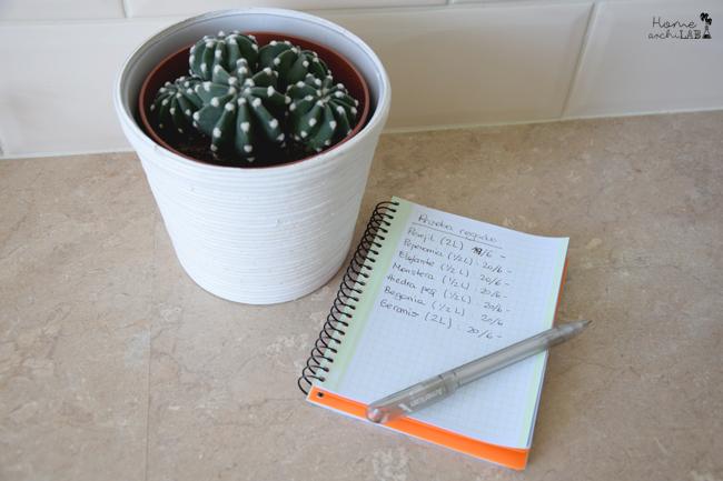 riego plantas vacaciones