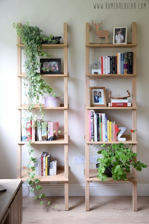 plantas de fácil cuidado