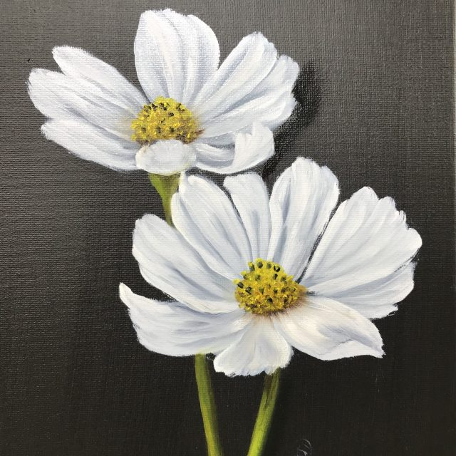 White Cosmos (Oils)