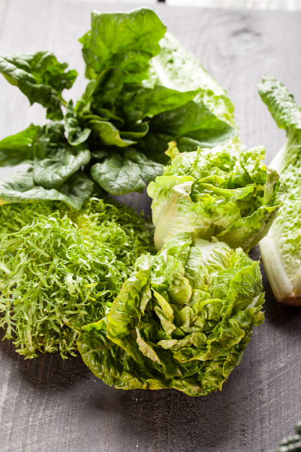 Organic freshly harvested romaine and butter heart lettuce, endive, and spinach