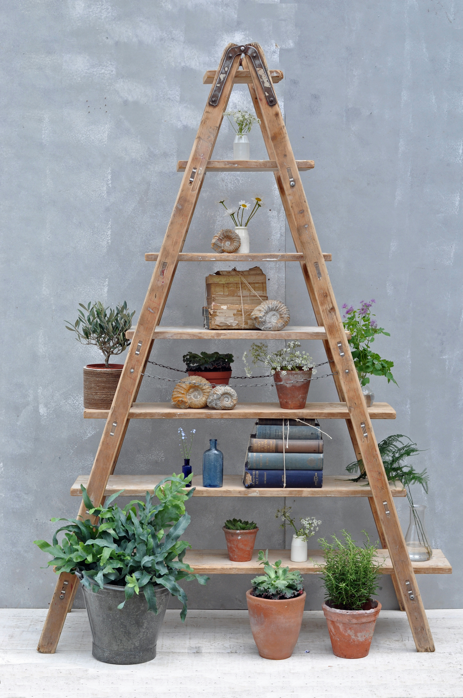 Vintage Reclaimed Ladder Shelves Rustic Shelving