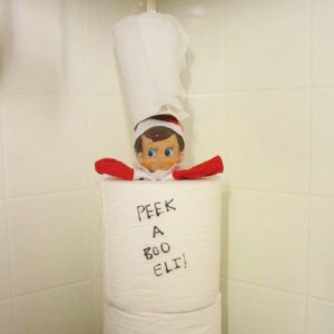 elf on the shelf peekaboo with toilet paper