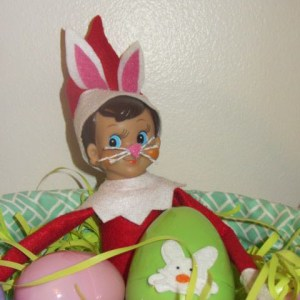elf on the shelf easter bunny