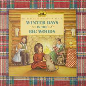 winter days in the big woods front cover