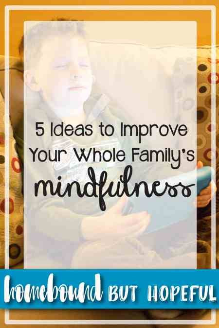 Family feeling a bit frazzled lately? I've got 5 great ways the entire family can work towards increased mindfulness.