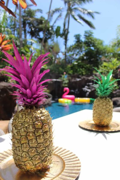 Aloha Botts & Totts | Pineapple Of My Eye Shower | Painted Pineapples
