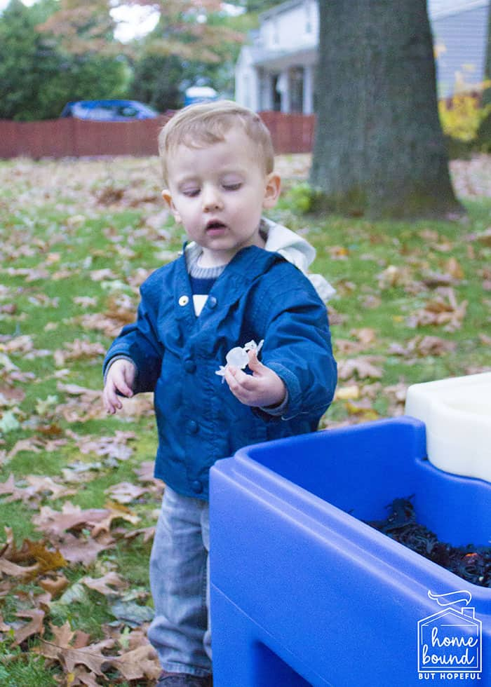 Sensory + Snack Pumpkin Picking Story Time- Sensory Bin