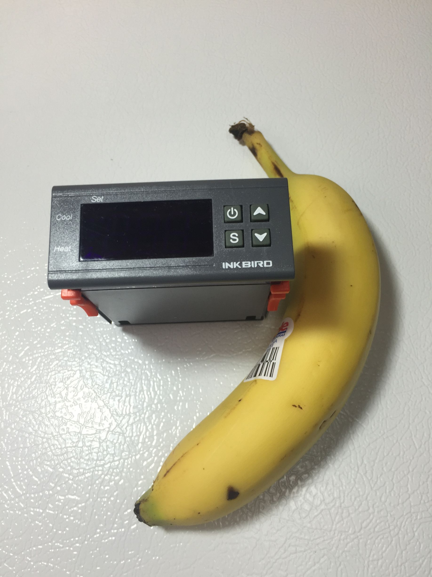 A Look At Itc 1000 Temperature Controller Pdf Manuals Build Kegerator Using Stc1000 Aquarium Temp For Size Comparison Next To Banana Yes I Ate This It Was Pretty Tasty