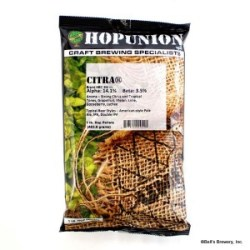 Hop Union Citra Pellet Homebrew