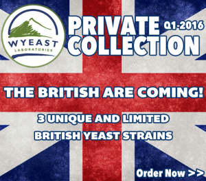 Private Collection Yeast