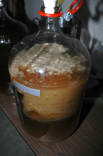 What Fresh Yeast And Dry Yeast