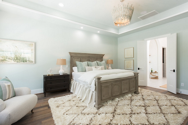 Seasalt SW6204 by Sherwin Williams