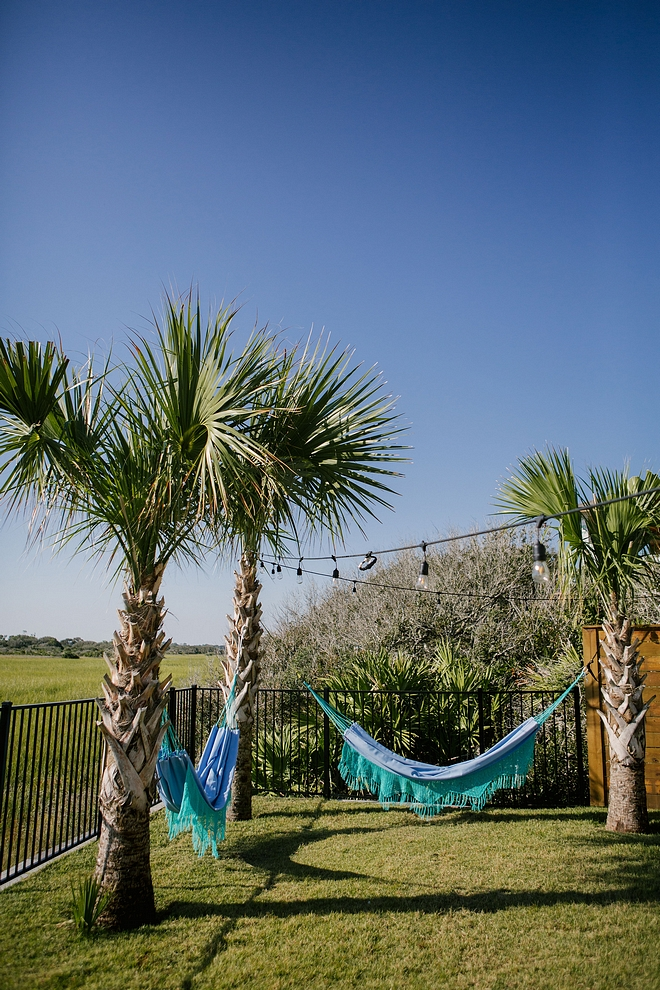 Hammocks on Palm trees #hammocks #palmtree #backyard