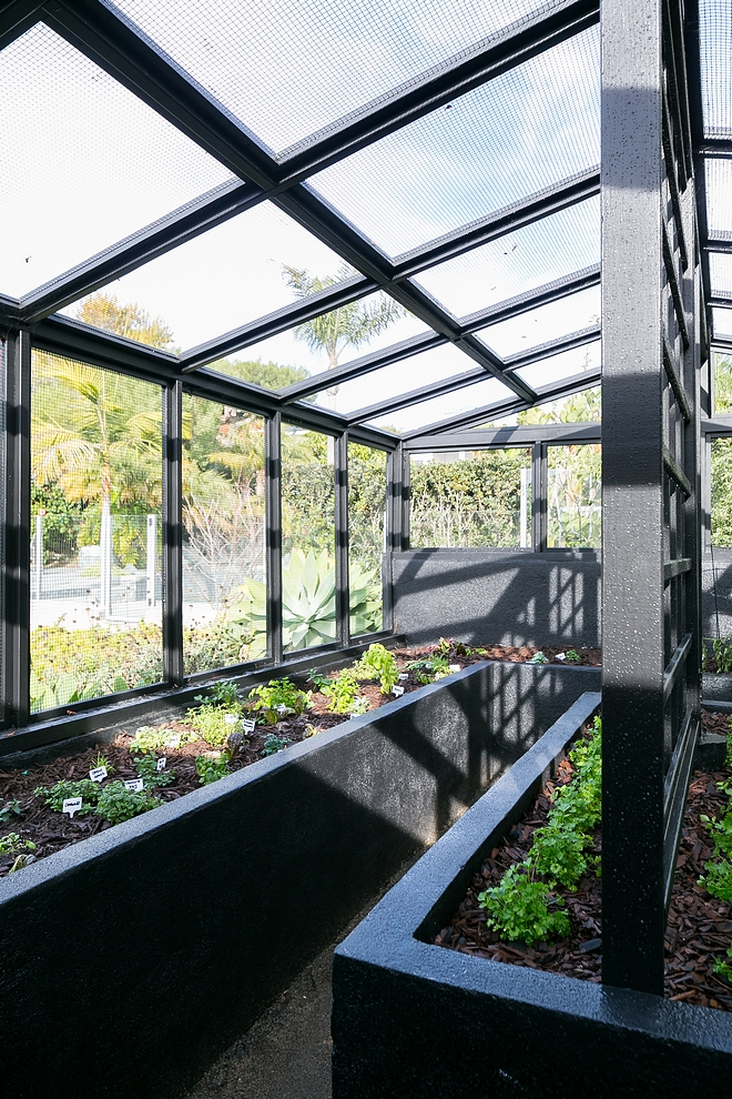 Modern Farmhouse Greenhouse Farmhouse Greenhouse with raised bed Raised vegetable garden The raised beds are easy on the back which is always a plus Modern Farmhouse Greenhouse Modern Farmhouse Greenhouse #ModernFarmhouseGreenhouse #Greenhouse #organicGreenhouse #raisedbeds #vegetablegarden #vegetableraisedbeds