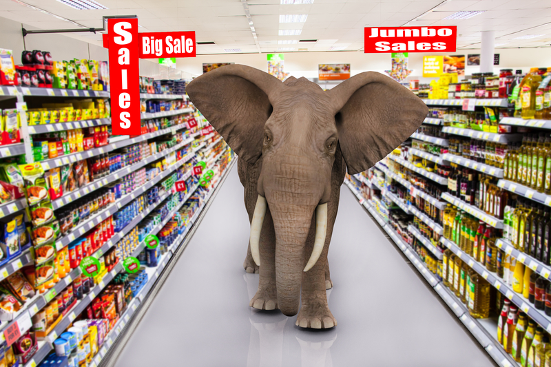 """elephant in supermarket""的图片搜索结果"
