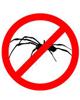 no_spiders