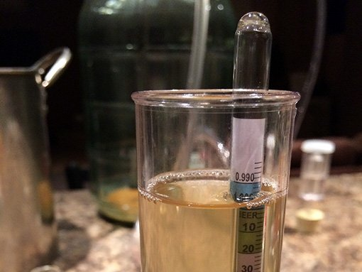 a hydrometer floating in a test cylinder full of cider to measure the specific gravity
