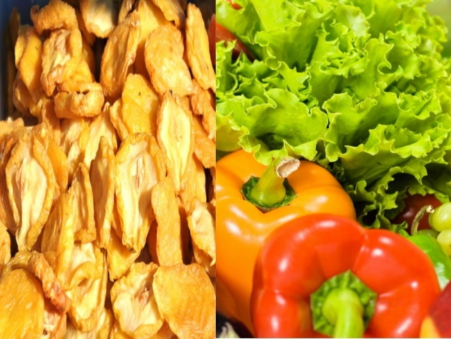 Tips and Tricks for Dehydrating Foods in A Food Dehydrator