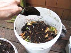food pail compost