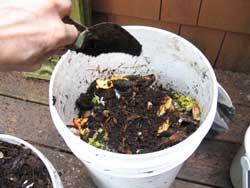 food pail compost