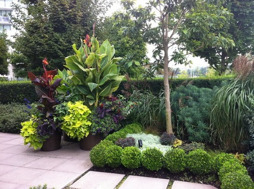 Wonderful Tips to Maximize the Beauty of Tropical ... on Tropical Backyard Landscaping  id=57112
