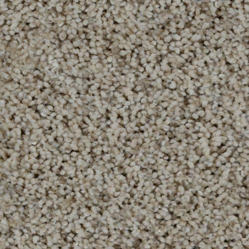 null Trendy Threads II - Color Lakeview Texture 12 ft. Carpet