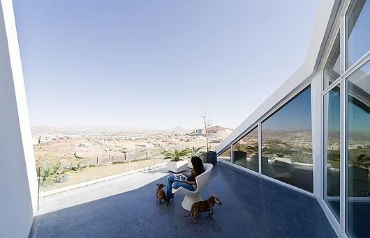 chihuahua 4 architecture