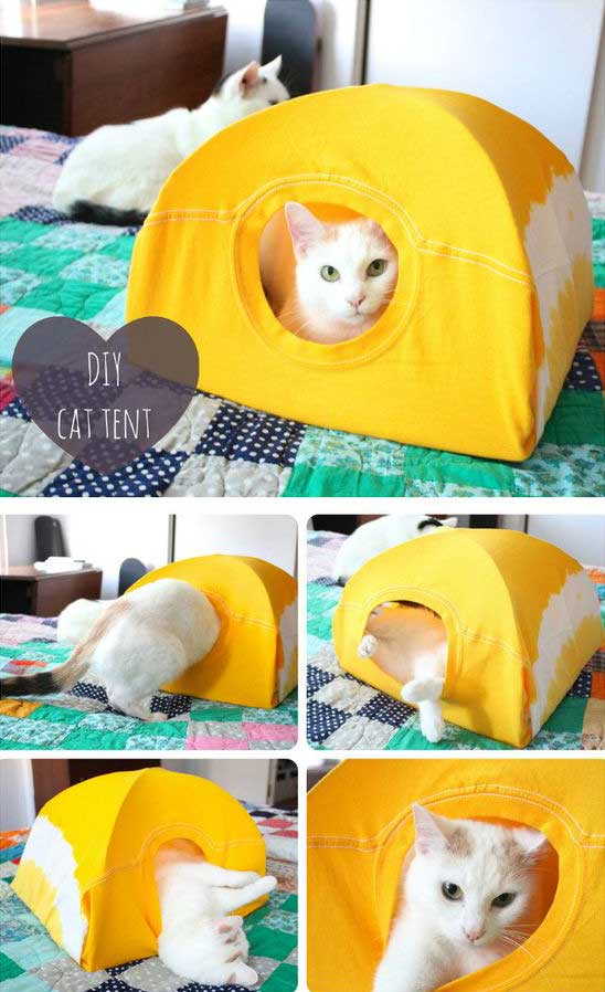 HDI-DIY-Pet-Projects-001