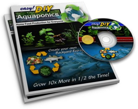 Easy DIY Aquaponics review manual and video course