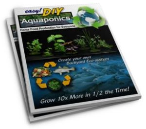 Easy DIY Aquaponics review manual course about aquaponic design and construction