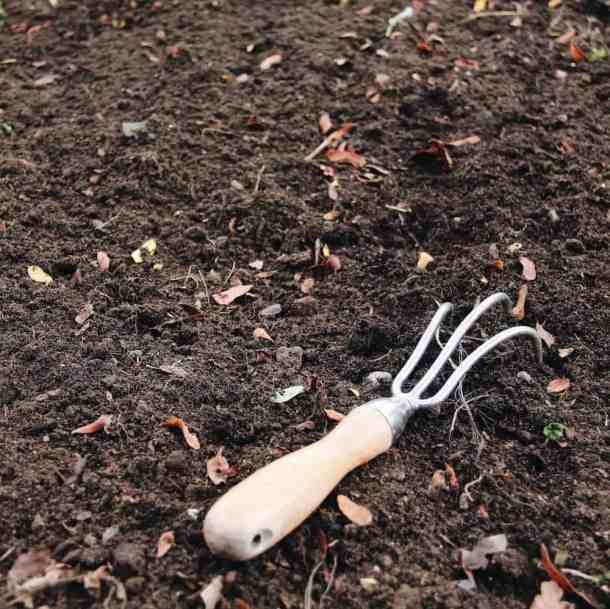 How to Start a Garden - Sowing Seeds | Home for the Harvest