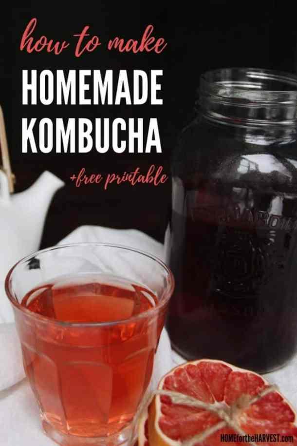 How to Make Organic Homemade Kombucha (+free printable!) | Home for the Harvest