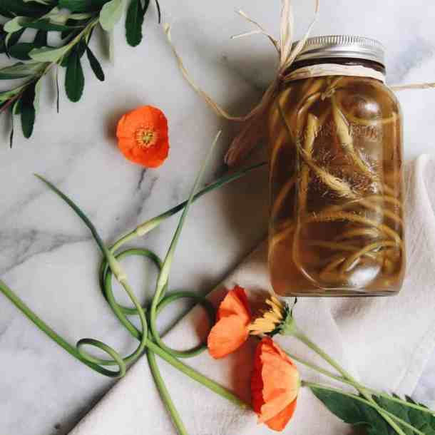 What are Garlic Scapes| Home for the Harvest Gardening Blog