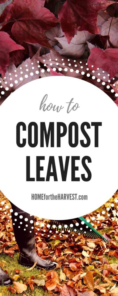 How to Compost Leaves into Organic Plant Food (Plus Free Printable!) | Home for the Harvest