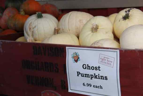 Okanagan Ghost Pumpkins | Home for the Harvest